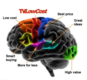tvlcdiagram_brain_cortex